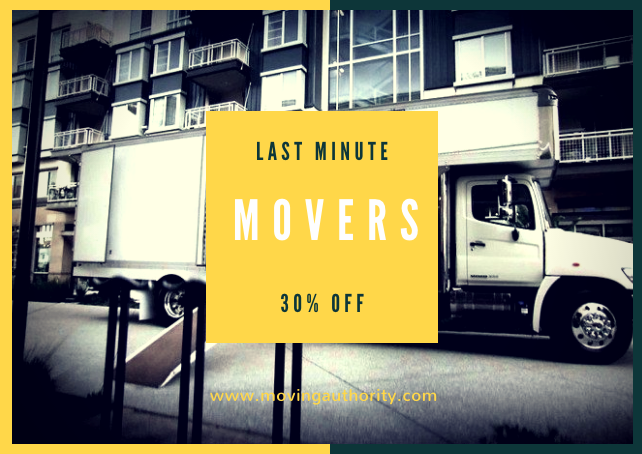 same day movers last minute