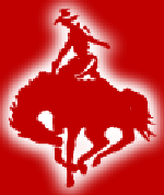 Cowboy Moving and Storage reviews