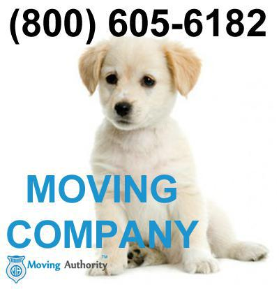 Not Your Average Movers company logo