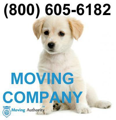 Oscar Desert City Movers company logo