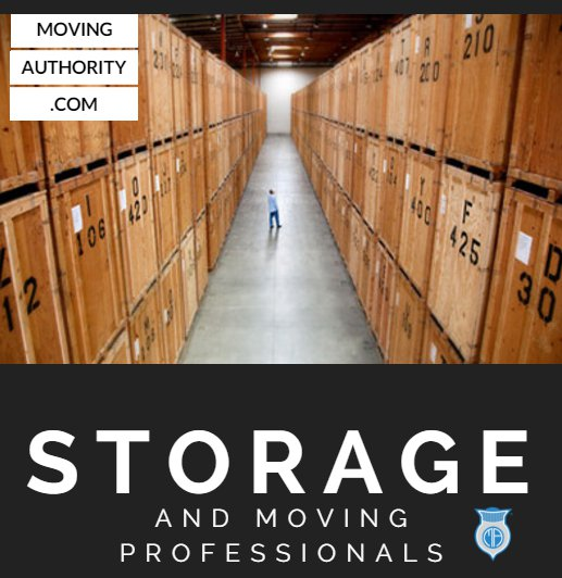 professional moving and storage guide